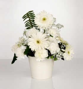 Beyaz Seramikte Beyaz Kır Çiçekleri