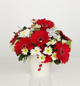 Seramikte gerbera ve kır çiçekleri